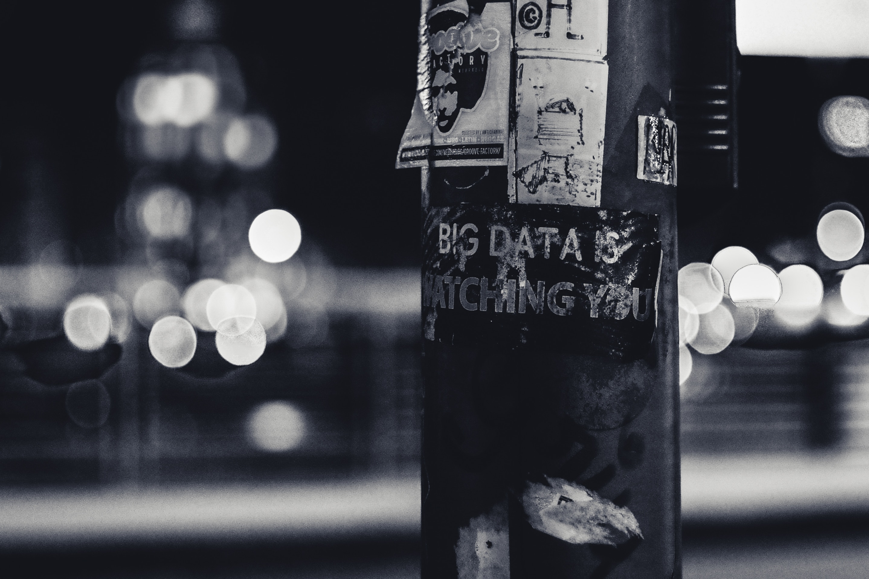 You are currently viewing Jeanne Lenzer: Big Data's big bias